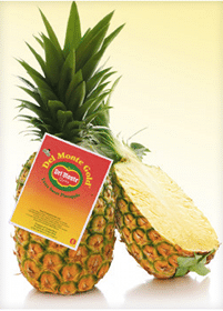 *Rare* $0.50/1 Del Monte Fresh Pineapple Coupon
