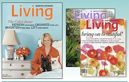 Subscription to Martha Stewart Living