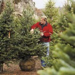 5 Holiday Tips from This Old House