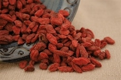 FREE Pure Handmade Chocolate Samples