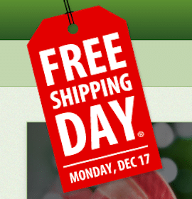 FREE Shipping Day for 1,500 Merchants + Guaranteed Delivery by Christmas Eve!
