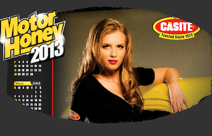 2013 Casite Miss Motor Honey Wall Calendar
