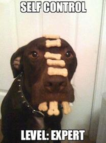 self control.jpg