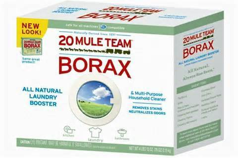6 Natural Ways to Remove Mold and Mildew - borax
