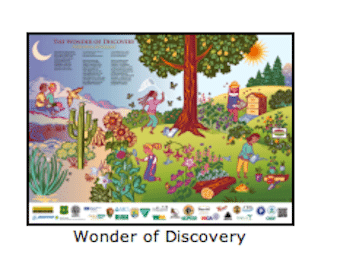 Wonder of Discovery 2013 Pollinator Poster