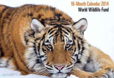 Free World Wildlife Fund 2014 Calendar