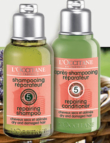 Repairing Haircare Duo Sample at L'Occitane