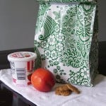 Go Green with DIY Lunch Bags