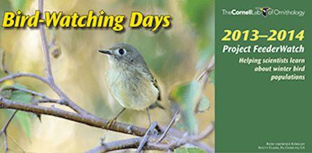 2013-14 Bird-Watching Days Calendar