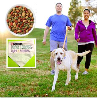 Purina Dog Chow Light & Healthy 5 oz. sample and Dog Bandana
