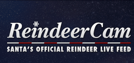 Watch Santa Feed the Reindeer at 11 AM, 6 PM and 9 PM EST
