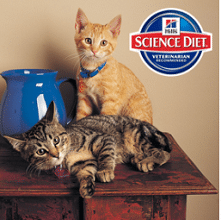 Free Hill's Science Diet Crunchy Creations Gift Baskets Giveaway