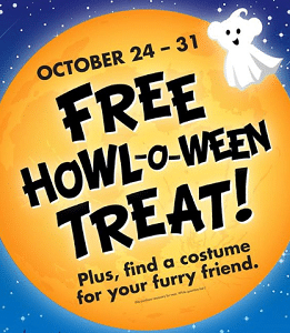 Free Halloween Treat at Buld-A-Bear on 10/24-10/31