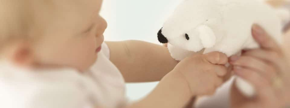 Free Cuddly Polar Bear (UK ONLY)