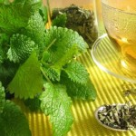 Crazy Herbal Remedies That Really Work