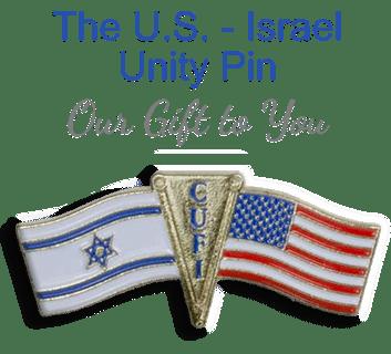 Free United States-Israel Unity Pin