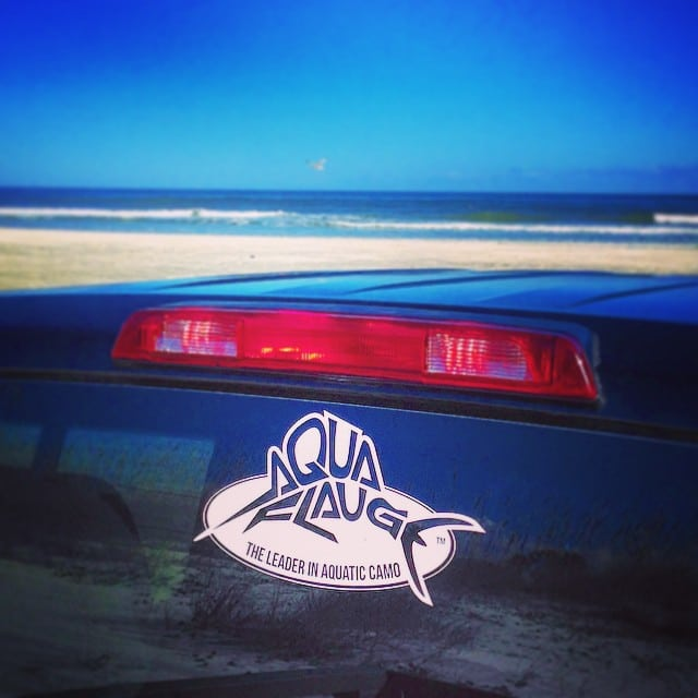 FREE Aquaflauge Decal