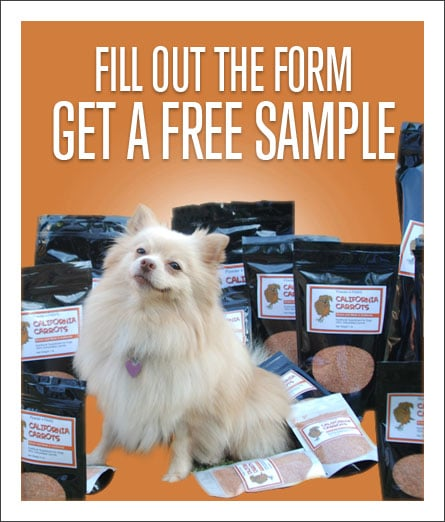 FREE Powder 4 PAWs Digestive Aid Sample