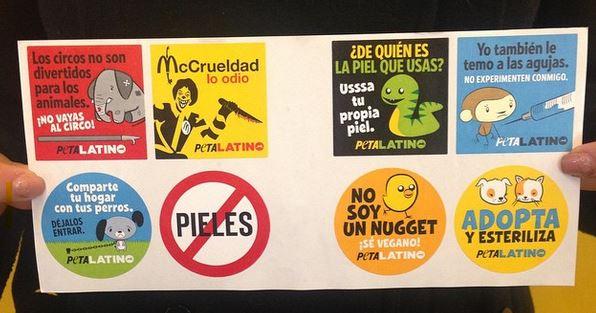 FREE Peta Latino Stickers & Printable Sticker Sheets