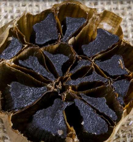 FAKE? FREE Obis One Organic Black Garlic Gourmet Food Sample