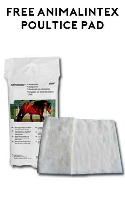 FREE Animalintex Poultice Pad