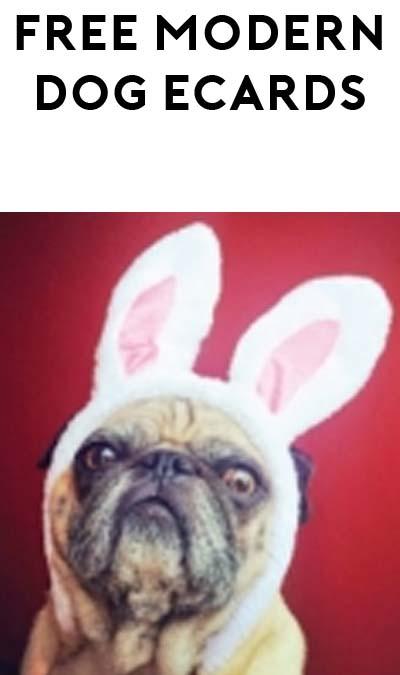 FREE Modern Dog Easter eCard