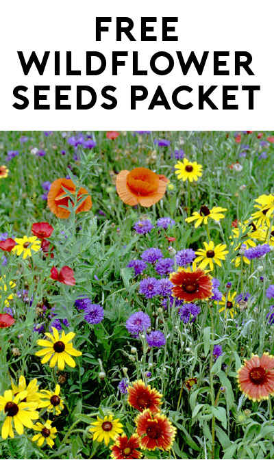 FREE Wildflower Seeds Packet [Verified Received By Mail]