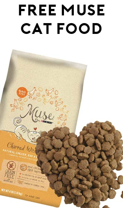 FREE Muse Dry Cat Food At Petsmart & Petco (Coupon Required)