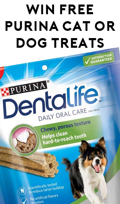Win FREE Purina DentaLife Daily Oral Care Treats For Cats Or Dogs