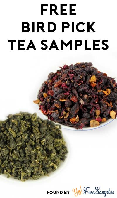 3 FREE Bird Pick Tea Samples (Email Required)