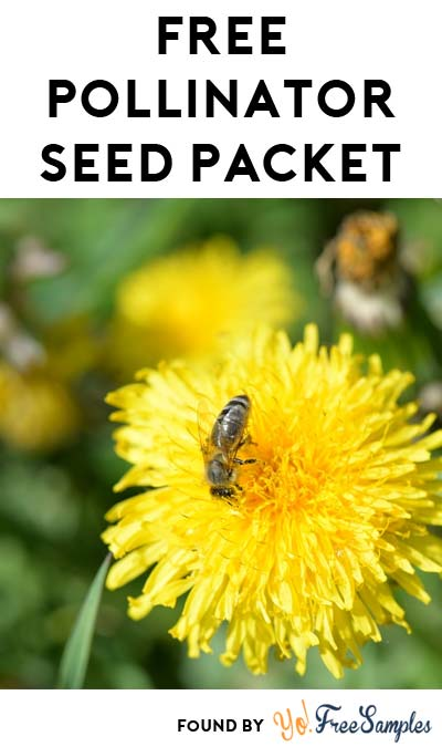 FREE Burpee Gardens Pollinator Garden Seed Packet (Facebook Required / Not Mobile Friendly)