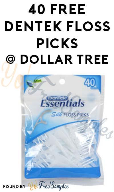 40 FREE Dentek Floss Picks at Dollar Tree (Coupon Required)