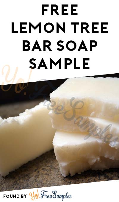FREE Lemon Tree Essential Oil Bar Soap Sample