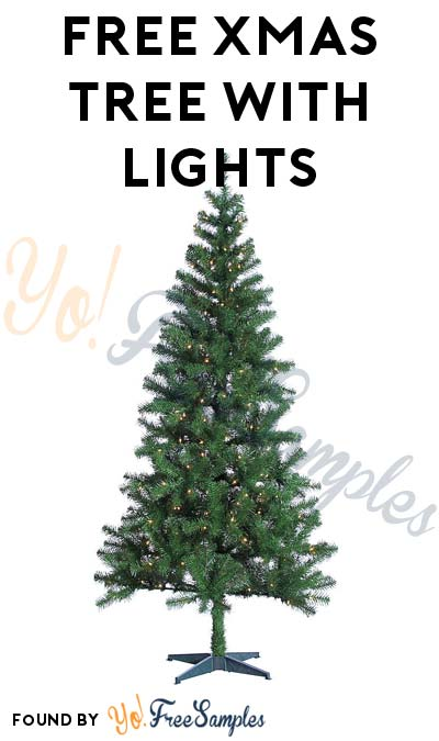 TODAY ONLY: FREE Christmas Tree With Lights After In-Store Pick Up & Sears Cashback