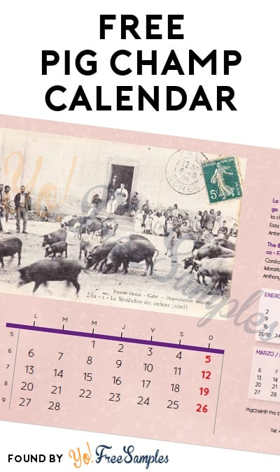 FREE Pig Champ 2017 Calendar (Email Required)