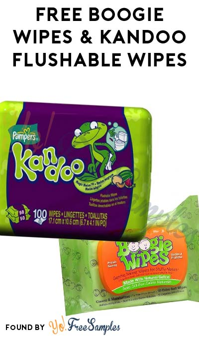 FREE Boogie Wipes & Kandoo Flushable Wipes (Preschools & Daycare Centers Only)
