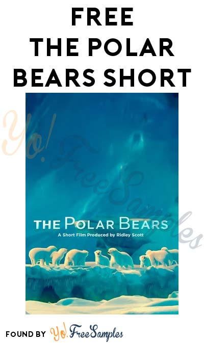FREE Coca-Cola Polar Bears Short Film