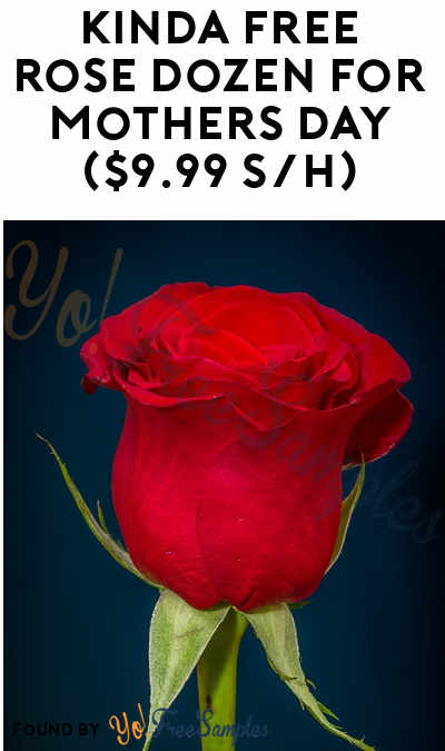 1-5 Nearly FREE Dozen Roses For Referring Friends ($9.99 Shipping Per Dozen)