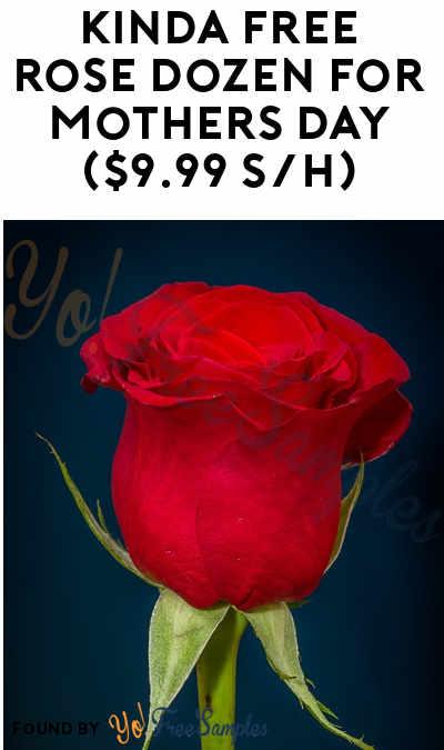 1-5 Nearly FREE Dozen Roses For Referring Friends ($9.99 Shipping Per Dozen)