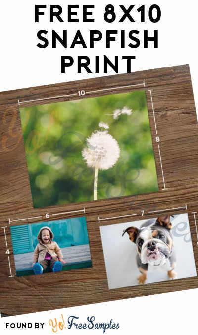 FREE 8×10 Snapfish Print With Free Shipping