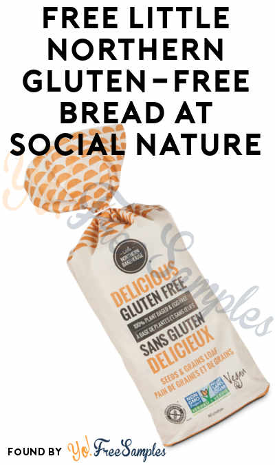 FREE Little Northern Gluten-Free Bread At Social Nature (Survey Required) [Verified Received By Mail]
