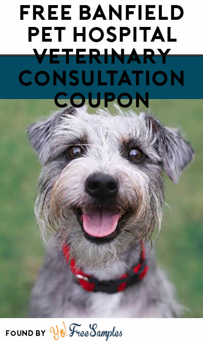 FREE Banfield Pet Hospital Veterinary Consultation Coupon