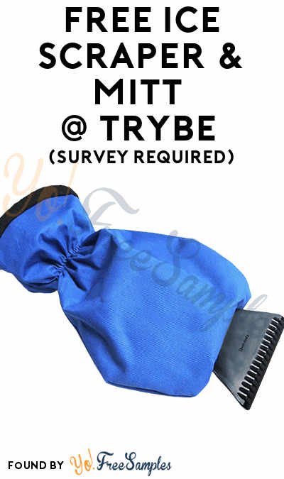 FREE Ice Scraper & Mitt At Trybe (Survey Required)
