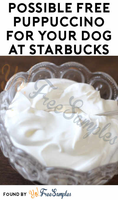 Possible FREE Puppuccino For Your Dog At Starbucks