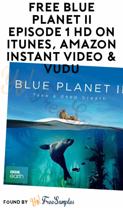 FREE Blue Planet II Episode 1 HD On iTunes, Amazon Instant Video & Vudu
