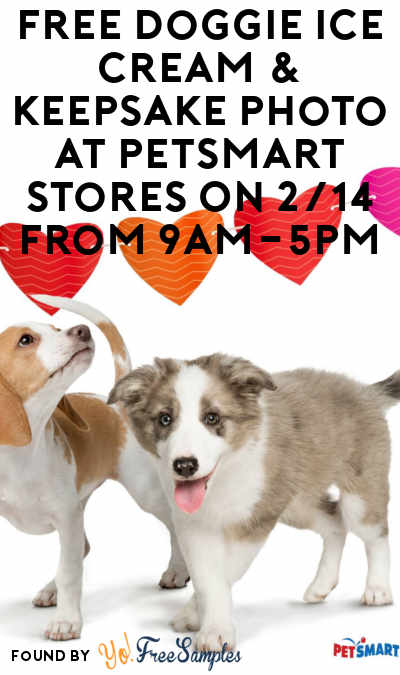 TODAY: FREE Doggie Ice Cream & Keepsake Photo At PetSmart Stores On 2/14 From 9AM-5PM