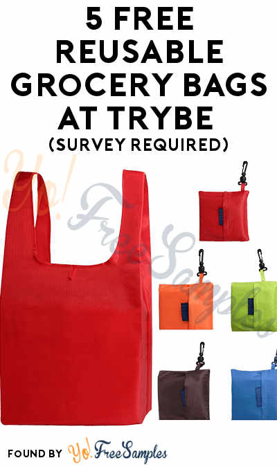 5 FREE Reusable Grocery Bags At Trybe (Survey Required)