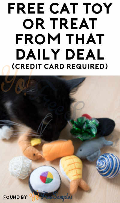 FREE Cat Toy or Treat From That Daily Deal (Credit Card Required)