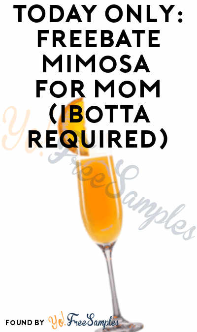 FREEBATE Mimosa Drink (Ibotta Required)