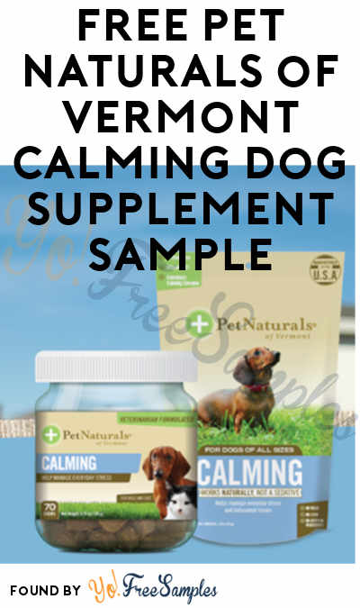 FREE Pet Naturals of Vermont Calming Dog Supplement Sample